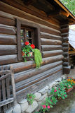 Old rural home in Romania. Window with flower of an  old rural home in Romania Stock Photography