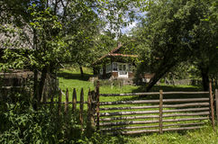 Farm. Old rural homestead surrounded by trees Royalty Free Stock Photos
