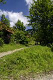 Farm. Old rural homestead surrounded by trees Stock Images