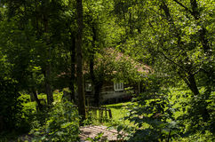 Farm. Old rural homestead surrounded by trees Stock Photos