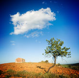 Old rural house and solitary tree Royalty Free Stock Image