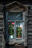 Old rural house window details. Flowers in window of log cabin style old rural house stock photography
