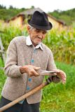 Old rural man using scythe. Senior farmer using scythe to mow the lawn traditionally Stock Images