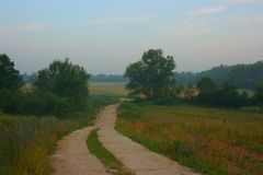 Old rural road in the early morning royalty free stock photography