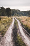 Old rural road in summertime. Stock Photography
