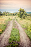 Old rural road in summertime. Royalty Free Stock Photos
