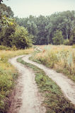 Old rural road in summertime. Royalty Free Stock Image