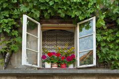 Old rural window Stock Images
