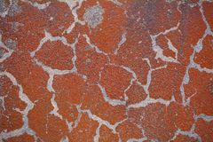 Old russet color on concrete Royalty Free Stock Images