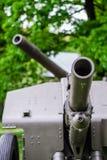 Old russian canon Stock Photos