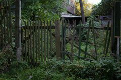 Old russian rickety wooden fence made of narrow boards in front of village house among trees and dense grass