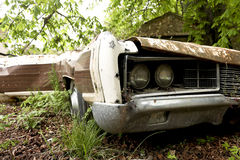 Old rusted and abandoned car Royalty Free Stock Images