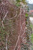 Rusted chainlink fence protecting a property. A old Rusted chainlink fence protecting a property for a robber Royalty Free Stock Photos