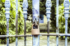 Old rusted lock on blue rusty iron gate Royalty Free Stock Image