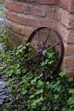 An Old, Rusted Metal Wheel. An old, rusted wheel leaning against a brick wall amidst overgrown plants Royalty Free Stock Image