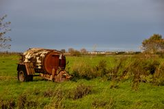 Manure spreader old in farmland stock photo