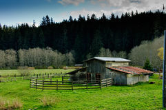 Old rustic abandoned barn with a corral and pasture Royalty Free Stock Images