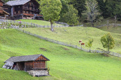 Old rustic alp farm. Old farm in the alp with cows on the medow Stock Photo