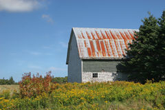 Old Rustic Barn royalty free stock photo