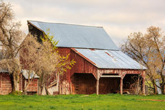 Old rustic barn. Royalty Free Stock Photography