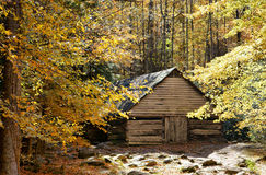 Old Rustic Barn surrounded by fall foliage. Rustic barn made of plank wood nested deep in the mountains surrounded by colorful autumn foliage Stock Images