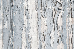 Old rustic blue and grey wood background with peeled color. Stock Photos