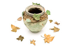 Old rustic clay pot with leaves Stock Photography