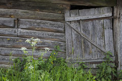 Old rustic door. Village life. old wooden door. large fragment Royalty Free Stock Photography