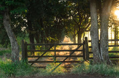 Old rustic farm gate Stock Photo