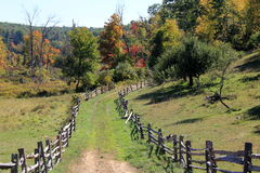 Old rustic fencing lining a grassy pathway into the woods Royalty Free Stock Photography