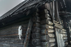 Old rustic log haunted house with horse skull on Royalty Free Stock Image