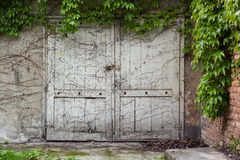 Old rustic white door Royalty Free Stock Photos