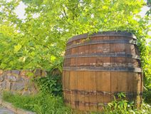 Old rustic wine barrel. Wine background in Europe. Czech Republic, South Moravia.  royalty free stock photography