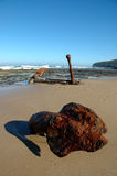 Old rusty anchor. An old rusty anchor lays buried on the shore at a beach in Australia Stock Photography