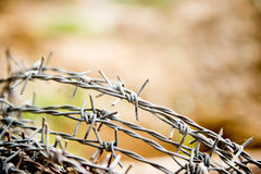 Old rusty barbed wire Stock Images