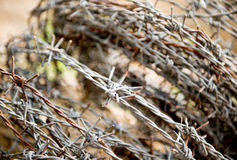 Old rusty barbed wire Stock Image