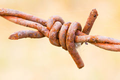 Old rusty barbed wire closeup Royalty Free Stock Photography