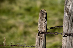 Old rusty barbed wire Royalty Free Stock Photo