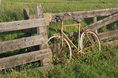 Old rusty bicycle against a fence in Holland royalty free stock images