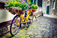 Old rusty bicycle with flowers Stock Photo