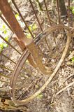 Old rusty bicycle wheel without a tire stock images