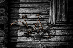 Old rusty bike on barn wall. Derelict wooden barn in Finland with rusty antique woman's bike minus one wheel hanging decoratively on the wall Stock Images