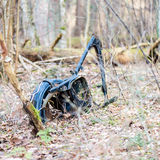 Old rusty bike in forest Royalty Free Stock Image