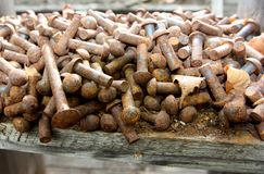 Old rusty bolts Stock Photography