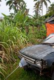 An old, rusty and broken car left in a backyard in Eua in Tonga royalty free stock photos