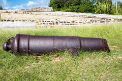 Old Rusty Cannon in Grass Stock Photography