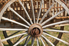 Old rusty cart wheel detail with green background Royalty Free Stock Photos