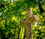A plane gnarled, rusty cross in a forest. stock images