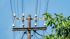 Old rusty electrical pole with many wires and transformers near the tree stock images