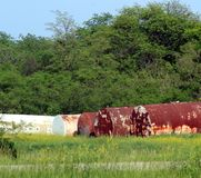 Old rusty farm tanks Stock Photo